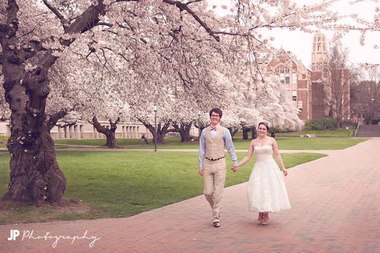 Cherry blossoms UW photo